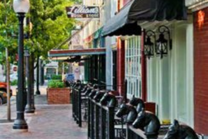 Best Things to Do in Gainesville, Florida