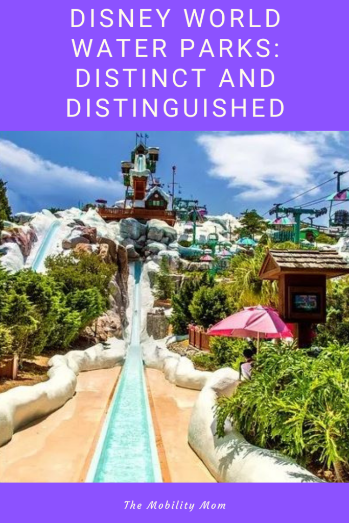 Disney World Water Parks: Distinct and Distinguished